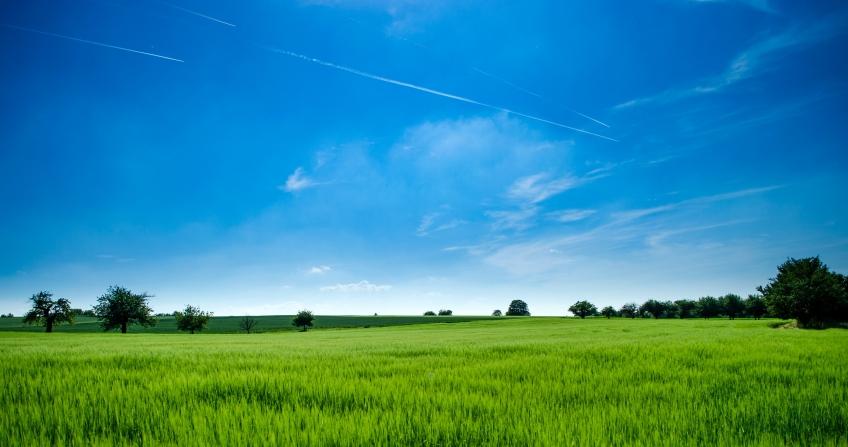Ako postupovať pri kúpe pozemku?