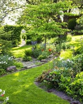 Ako naplánovať založenie záhrady?