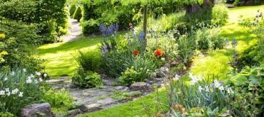 Projekty domov | Ako naplánovať založenie záhrady?