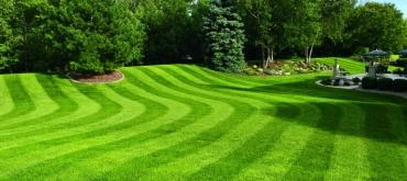 Projekty domov | Ako vysadiť trávnik